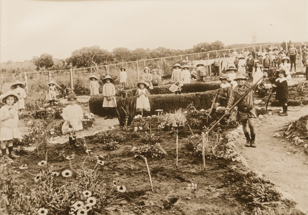 School children partaking in a gardening project in the grounds of Coogee School, 1912.