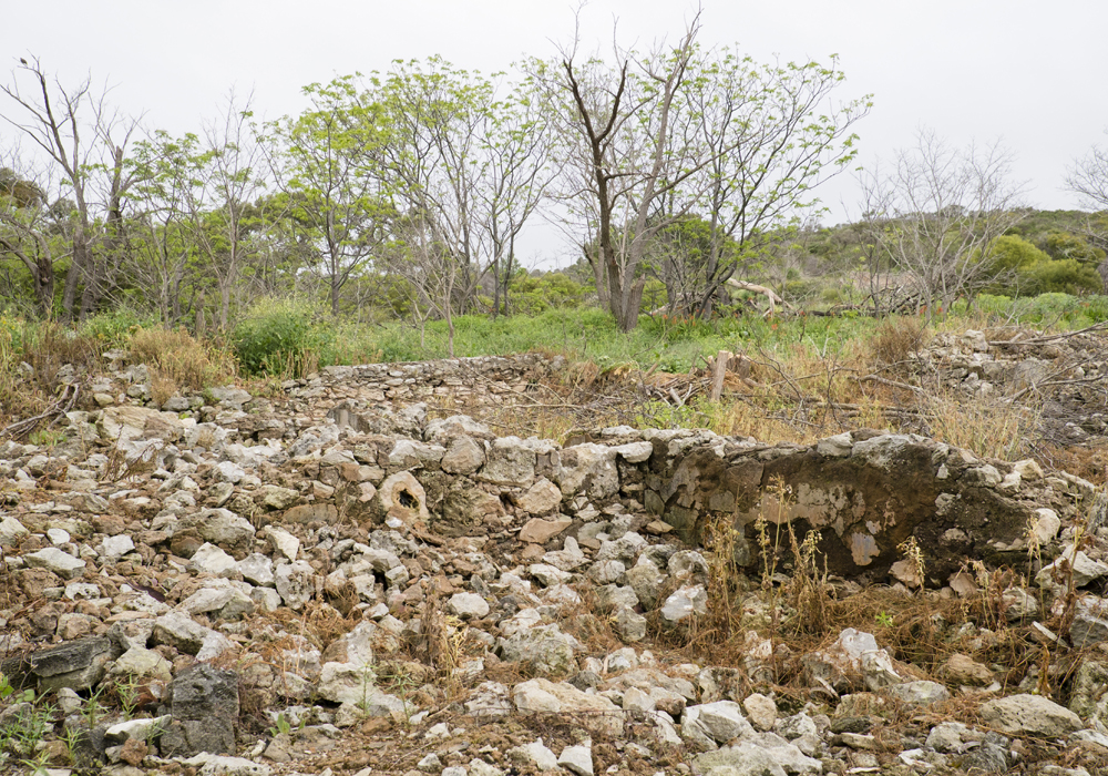 The ruins of the Davilak House Estate.
